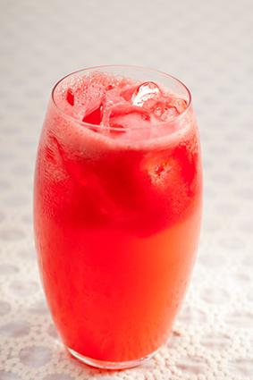 Sloe Gin Fizz cocktail with ice