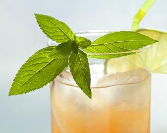 Sea breeze fizz cocktail