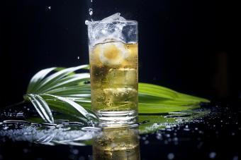Tepache Cocktail