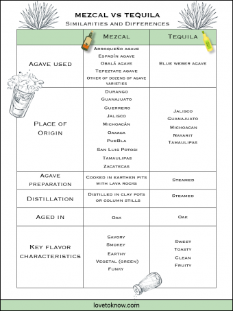 Chart with similarities and differences between Mezcal and Tequila