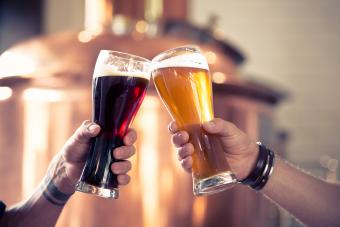 Differences Between Ale, Lager and Beer: Know Your Brew