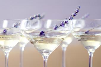 Champagne Jello Shots: Simple Recipes for Elegant Fun