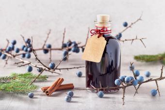 Sloe Gin Primer and Favorite Recipes