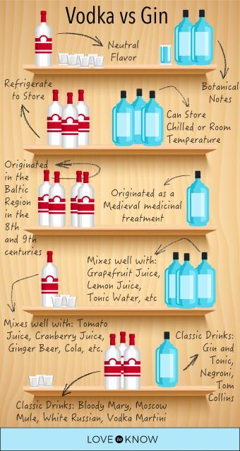 Vodka vs Gin Infographic