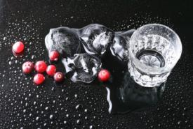 glass of vodka with cranberries