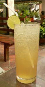 Vodka and diet ginger ale