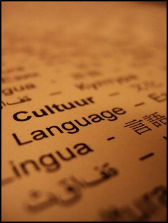 Accredited Online College Level Foreign Language Courses