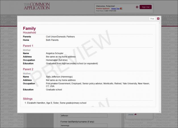 Screenshot of sample Common App