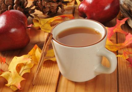 Hot apple cider; © Msphotographic | Dreamstime.com