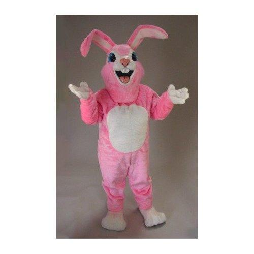 https://cf.ltkcdn.net/costumes/images/slide/105177-500x500-pink_rabbit_mascot_costume.jpg