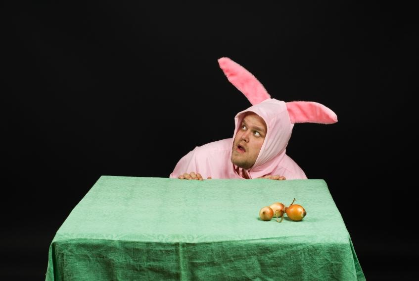 https://cf.ltkcdn.net/costumes/images/slide/105179-847x567-adult_bunny_costume.JPG