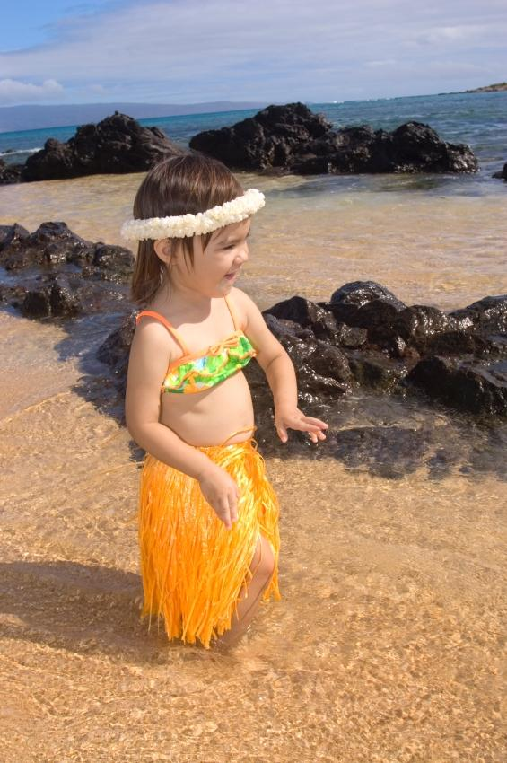 https://cf.ltkcdn.net/costumes/images/slide/105205-565x850-hula_swimsuit.JPG