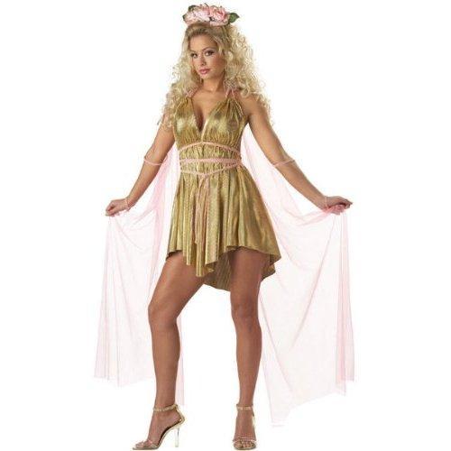 https://cf.ltkcdn.net/costumes/images/slide/105217-500x500-Aphrodite_Costume.jpg