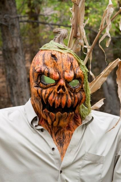 https://cf.ltkcdn.net/costumes/images/slide/145911-424x636r1-CrazyPumpkinHead1.jpg