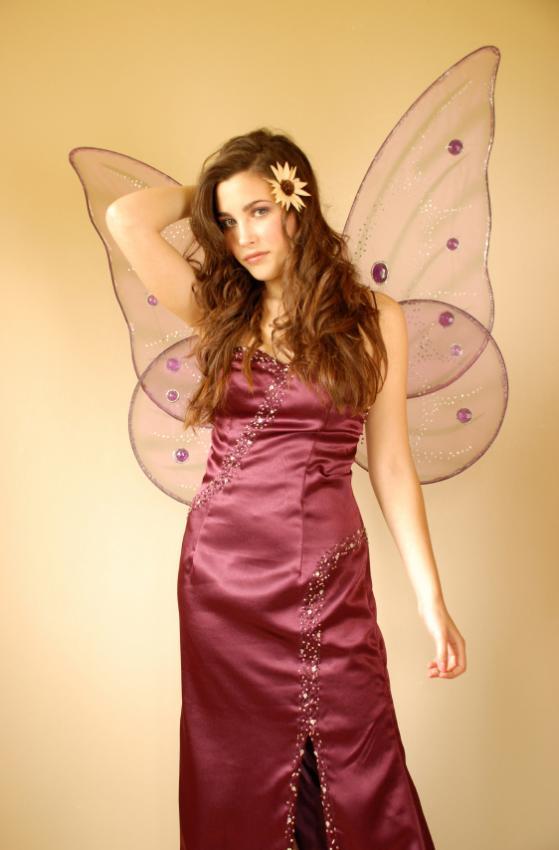 https://cf.ltkcdn.net/costumes/images/slide/167166-559x850-elegant-fairy.jpg
