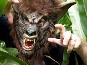 https://cf.ltkcdn.net/costumes/images/slide/104930-300x223-Werewolf.jpg