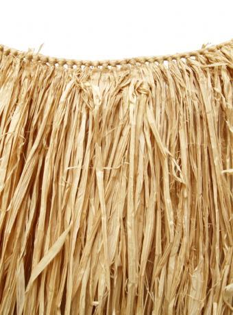 https://cf.ltkcdn.net/costumes/images/slide/105187-596x805-luau_grass_skirt.JPG