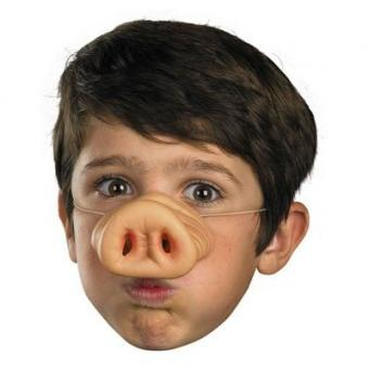 https://cf.ltkcdn.net/costumes/images/slide/105259-400x400-3_Little_Pigs.jpg
