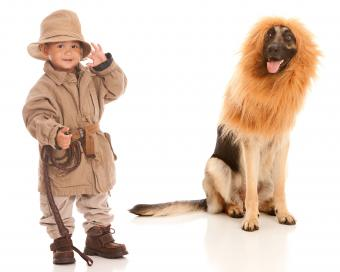 Boy in jungle explorer safari costume