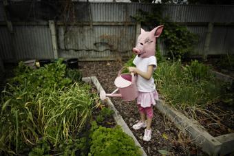 https://cf.ltkcdn.net/costumes/images/slide/247439-850x567-pig-mask.jpg