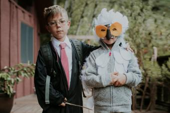 Brothers dressed up as Harry Potter and owl on Halloween