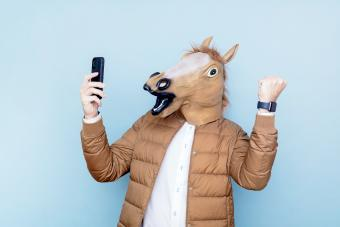 Horse man with raised fists and smart phone in hand