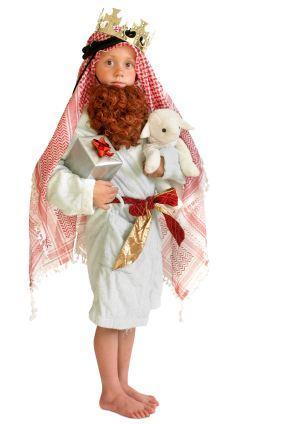 Nativity Animal Costumes