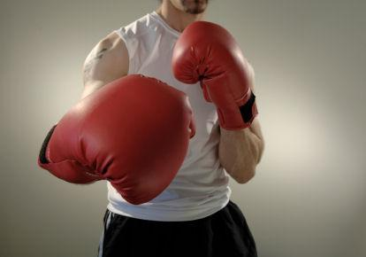 boxer costume basics