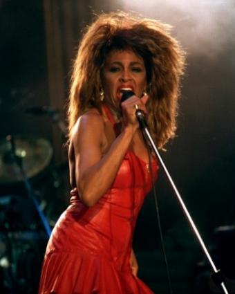 Tina Turner Costume Lovetoknow