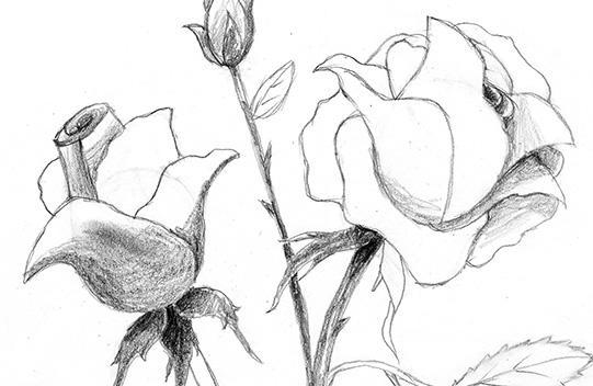https://cf.ltkcdn.net/crafts/images/slide/179566-541x352-Step-5-Shading-Closeup-sm.jpg