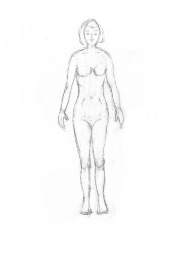 Add breasts and rounded shapes to a female torso