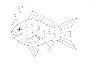 https://cf.ltkcdn.net/crafts/images/slide/181082-700x541-How-to-Draw-Fish-6-new.jpg