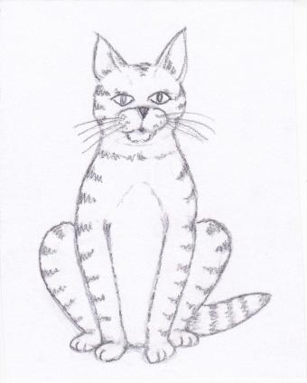 Finished drawing of a cat