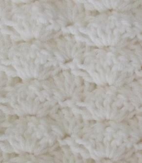 Close up of shell pattern