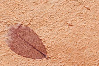Handmade paper with leaf