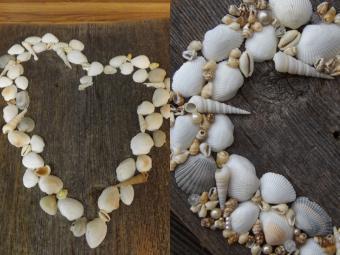 Add small shells