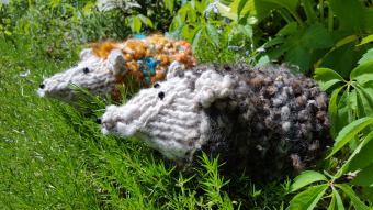 Free Hedgehog Knitting Pattern