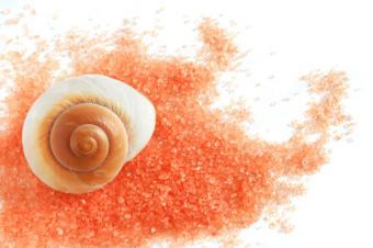 Salt and shell