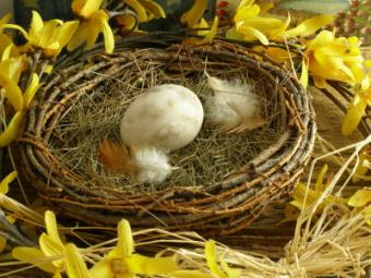 Floral Craft Bird Nests