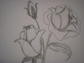 Finished drawing of a roses