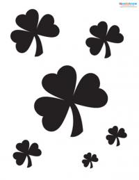 multiple shamrocks