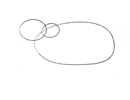 Sketch of polar bear head and body