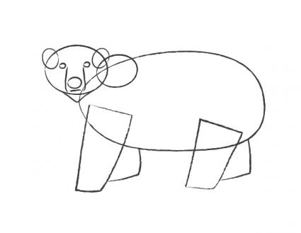 Adding ears, nose, and eyes to polar bear