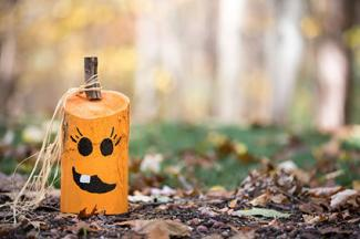 Rustic wooden pumpkin craft
