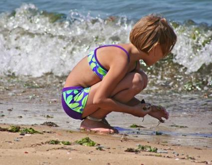 collecting shells on the beach