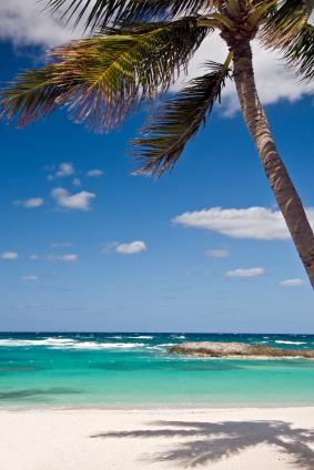 Bahamas Shore Excursion Options