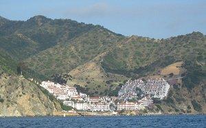Catalina Island Dinner Cruises