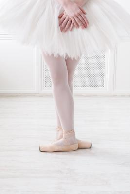 ballerina in 3rd position