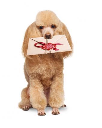 https://cf.ltkcdn.net/dating/images/slide/184321-643x800-puppy-love-note.jpg