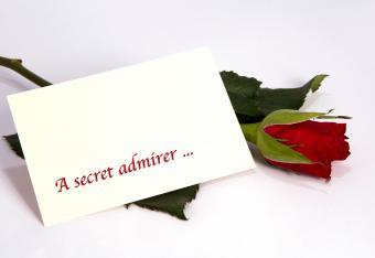 Rose with secret admirer note
